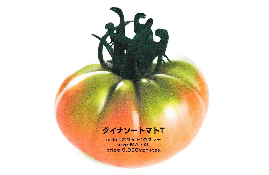 feature-umedabd-2015-05-spbnb-1_tomato