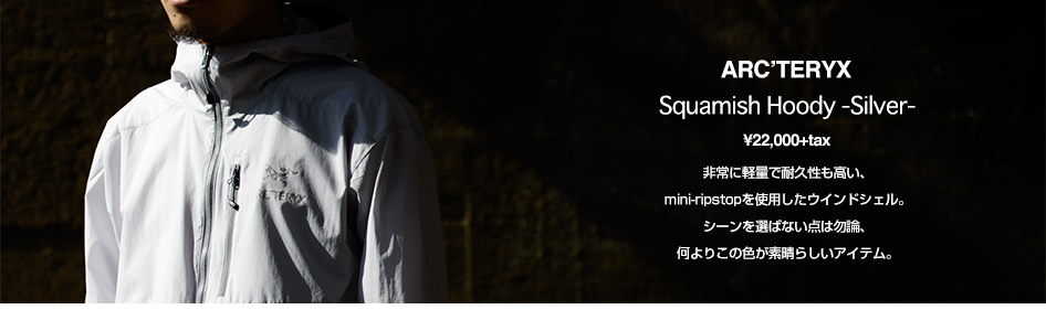 ARC'TERYX/Squamish Hoody-Silver